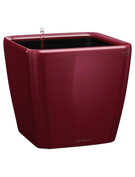 LECHUZA Pflanzgefäß »QUADRO«, BxHxT: 22 x 20,5 x 23,5 cm, rot