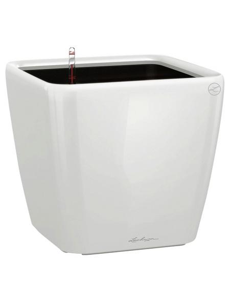 LECHUZA Pflanzgefäß »QUADRO«, BxHxT: 43 x 39,5 x 43,5 cm, weiß hochglanz