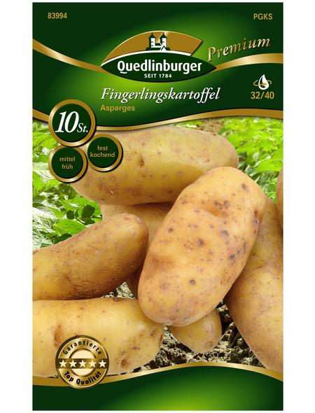 Quedlinburger Pflanzkartoffel, Solanum tuberosum » Asparges«, 10 Stück