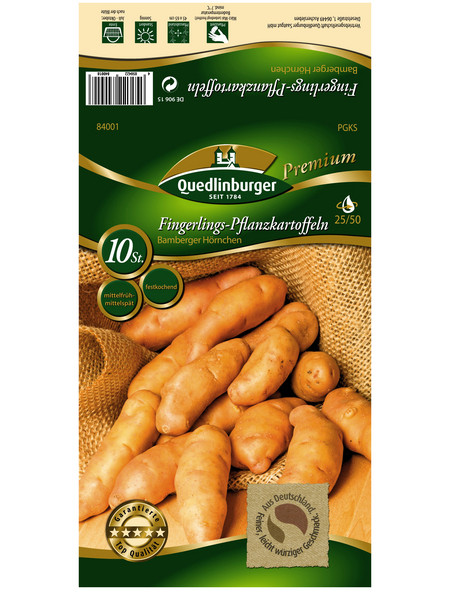 Quedlinburger Pflanzkartoffel, Solanum tuberosum »Bamberger Hörnchen«, 10 Stück