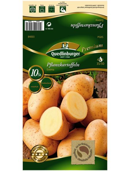 Quedlinburger Pflanzkartoffel, Solanum tuberosum »Estima «, 10 Stück