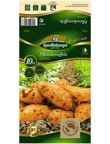 Quedlinburger Pflanzkartoffel, Solanum tuberosum »Goldmarie «, 10 Stück