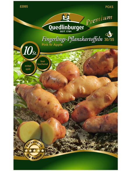 Quedlinburger Pflanzkartoffel, Solanum tuberosum »Pink fir Apple«, 10 Stück