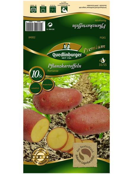 Quedlinburger Pflanzkartoffel, Solanum tuberosum »Romanze «, 10 Stück