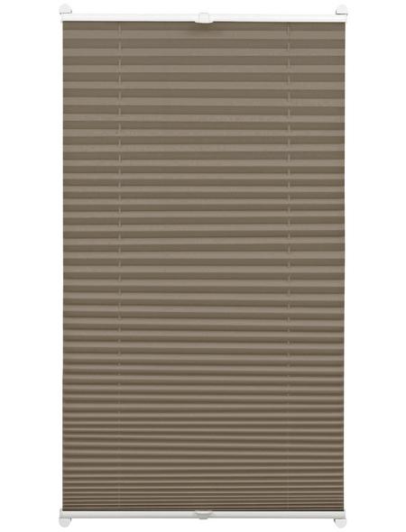 Plissee lichtdurchlässig, Easyfix, 100x130 cm