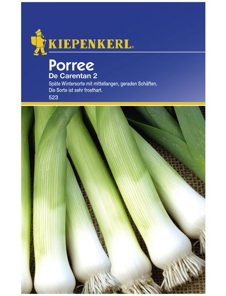 KIEPENKERL Porree porrum Allium