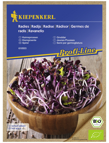 KIEPENKERL Radieschen sativus Raphanus