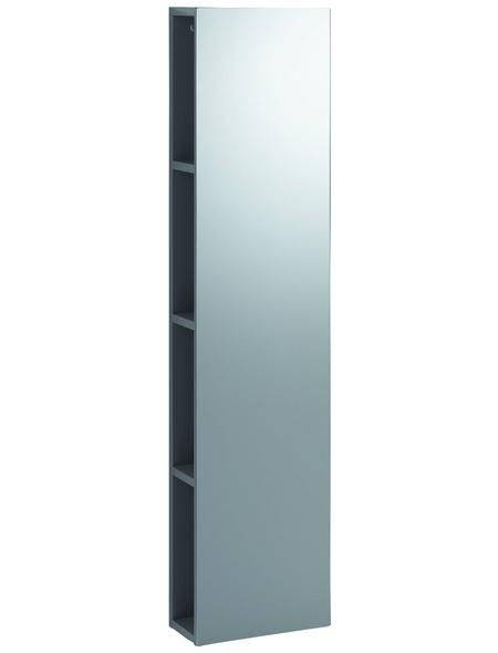 GEBERIT Rahmenspiegel »iCon«, BxH: 28 x 120 cm, Glas