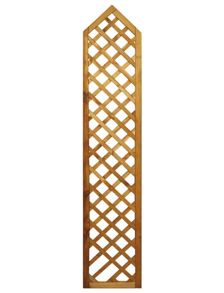 Rankgitter, BxH: 40 x 200 cm, Holz