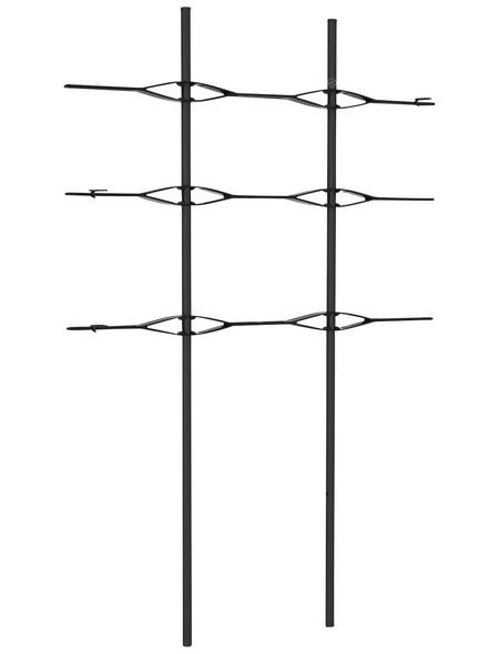 LECHUZA Rankgitter, BxHxT: 86 x 135 x 15 cm, schwarz
