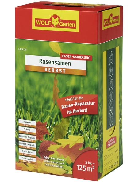 WOLF GARTEN Rasengräser-Samen »Herbst Rasensamen«