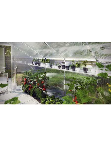 KGT Regal für Gewächshäuser »Flora III«, BxHxt: 227 x 5 x 26 cm, Aluminium