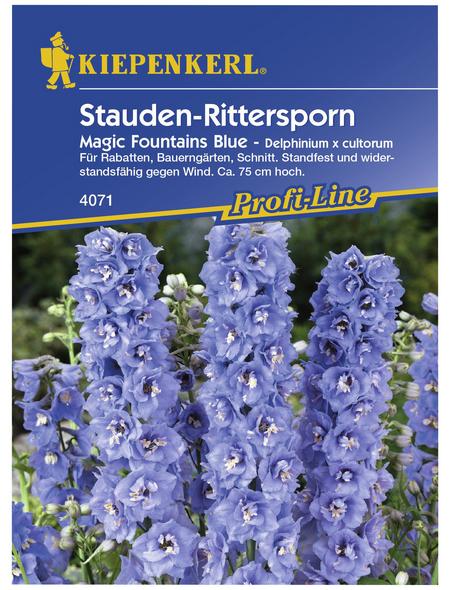 KIEPENKERL Rittersporn, Delphinium elatum, Samen, Blüte: blau