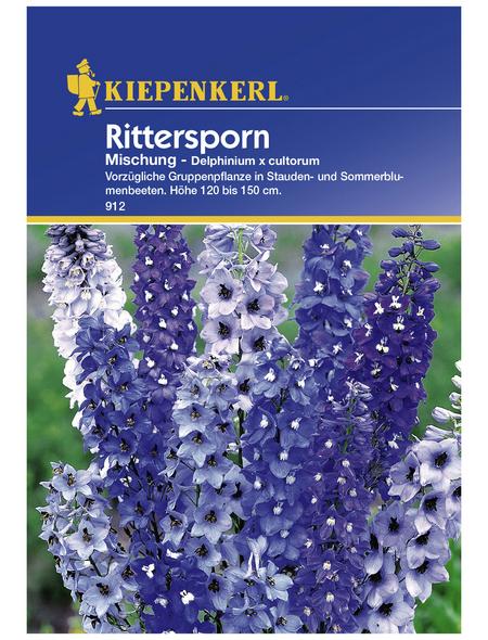 KIEPENKERL Rittersporn, Delphinium x cultorum, Samen, Blüte: mehrfarbig