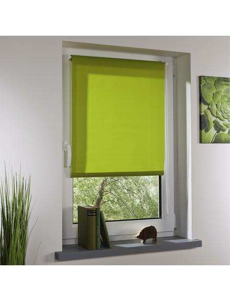 LIEDECO Rollo, grün, Klemmfix, Polyester