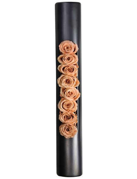 flowerbox Rosen, bunt
