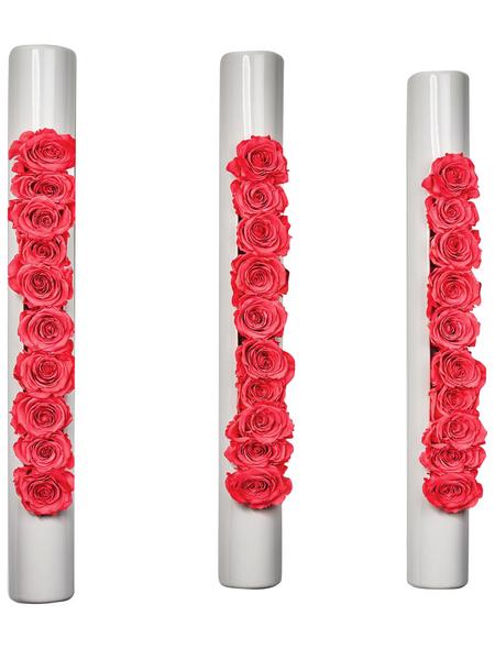 Rosen in Keramik »Infinity-Bloom«, 3er-Set bigTube, weiss/hellrot, BxHxT: 65 x 7,5 x 11  cm