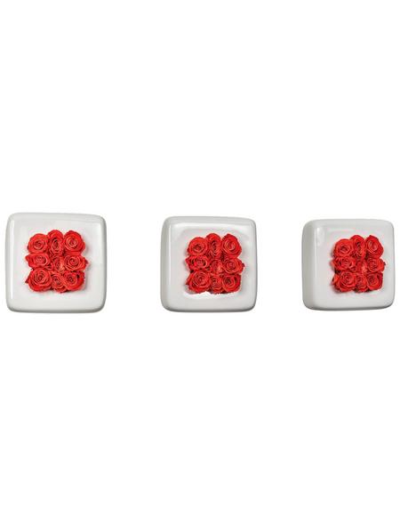 Rosen in Keramik »Infinity-Bloom«, 3er-Set Chest, weiss/hellrot, BxHxT: 16 x 16 x 9  cm