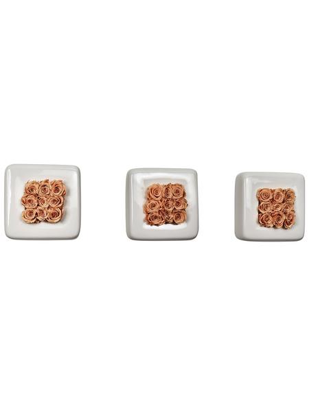 Rosen in Keramik Infinity Bloom 3er-Set Chest, weiss/rose, BxHxT: 16 x 16 x 9  cm