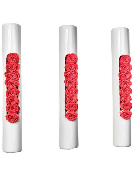 Rosen in Keramik »Infinity-Bloom«, 3er-Set Tube, weiss/hellrot, BxHxT: 40 x 6,5 x 9  cm
