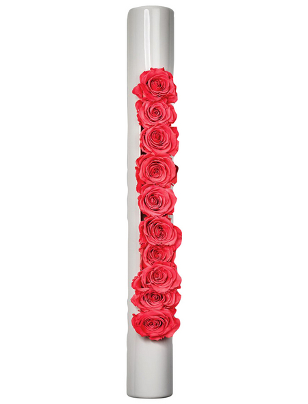 Rosen in Keramik »Infinity-Bloom«,  bigTube, weiss/hellrot, BxHxT: 65 x 7,5 x 11  cm