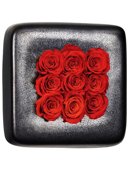 Rosen in Keramik »Infinity-Bloom«, Chest, anthrazit/rot, BxHxT: 16 x 16 x 9  cm