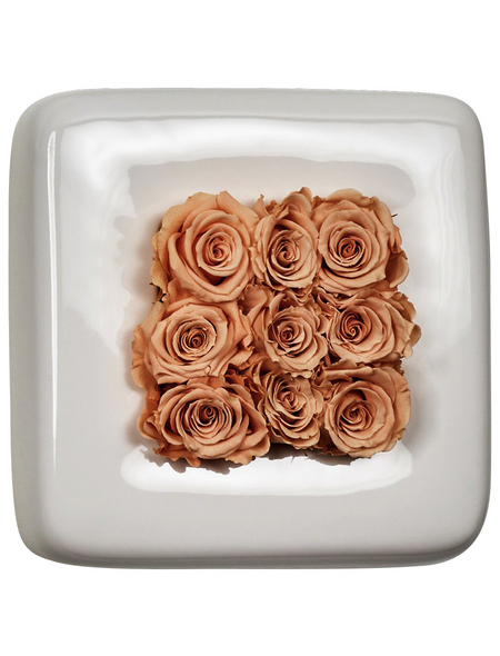 Rosen in Keramik »Infinity-Bloom«,  Chest, weiss/rose, BxHxT: 16 x 16 x 9  cm