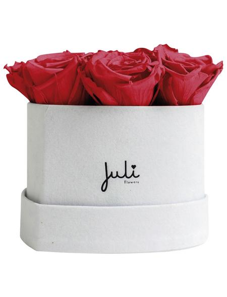 JULI FLOWERS Rosenbox, rot, Größe: XS mit 9 Rosen, herzförmig