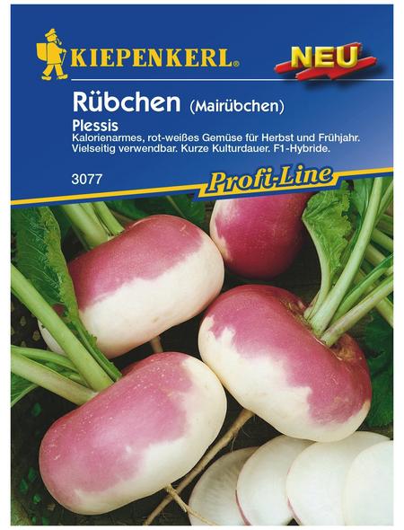 KIEPENKERL Rübchen Brassica rapa »Plessis«