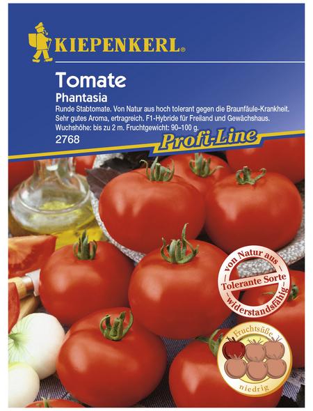 KIEPENKERL Salat-Tomate lycopersicum Solanum »Phantasia«