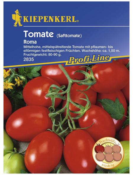 KIEPENKERL Salat-Tomate lycopersicum Solanum »Roma«