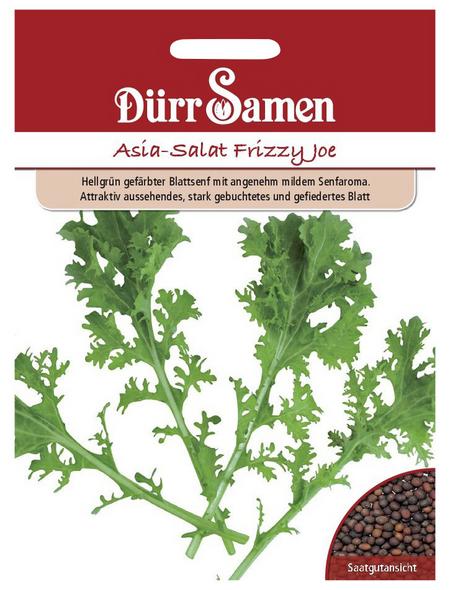 DÜRR SAMEN Samen Asia-Salat Frizzy Joe