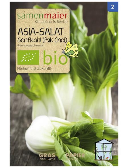SAMEN MAIER Samen Bio Asia-Salat, Senfkohl (Pak Choi)