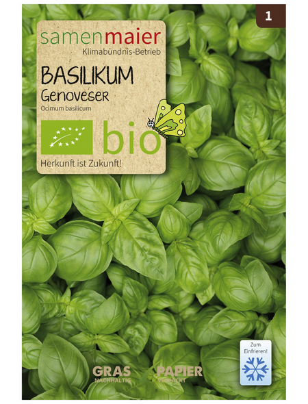 SAMEN MAIER Samen Bio Basilikum, Genoveser, einj.