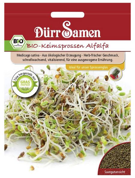 DÜRR SAMEN Samen BIO-Keimsprossen Alfalfa