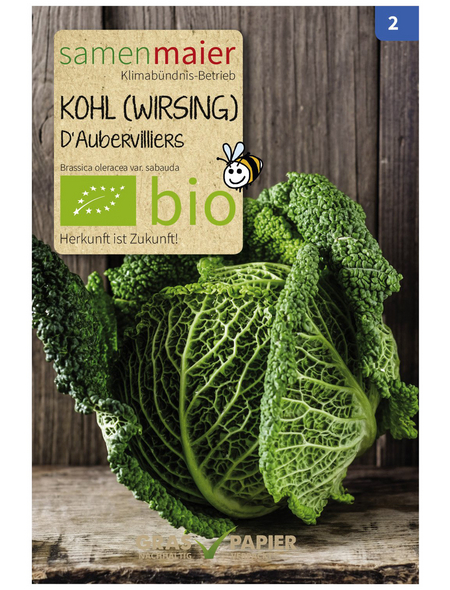 SAMEN MAIER Samen Bio Kohl (Wirsing), D'Aubervilliers