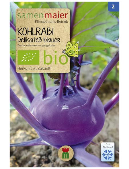 SAMEN MAIER Samen Bio Kohlrabi, Delikatess blauer, früh