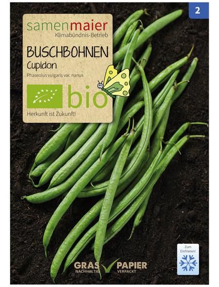 SAMEN MAIER Samen, Buschbohnen, Filetbohne Cupidon, grün