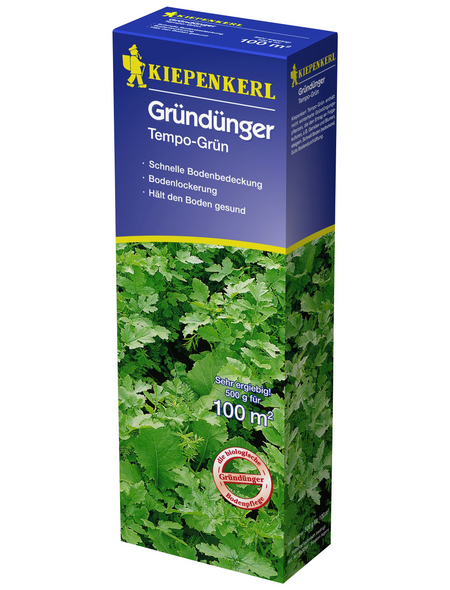 KIEPENKERL Samen Kiepenkerl Gründünger Tempo-Grün