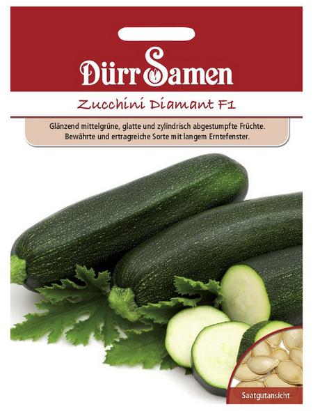 DÜRR SAMEN Samen Zucchini Diamant F1
