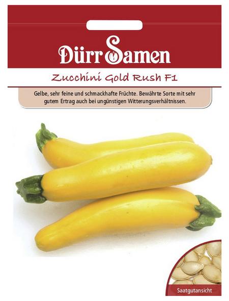 DÜRR SAMEN Samen Zucchini Gold Rush F1