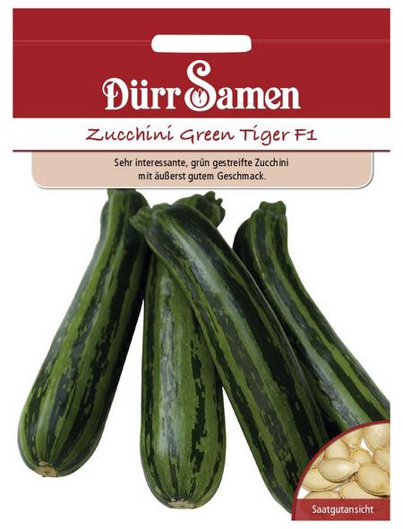 DÜRR SAMEN Samen Zucchini Green Tiger F1