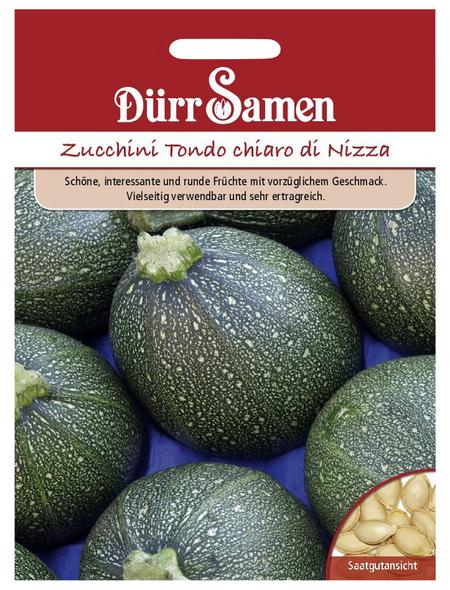 DÜRR SAMEN Samen Zucchini Rondini Tondo chiaro di Nizza