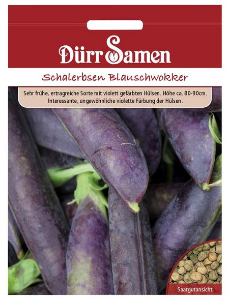 DÜRR SAMEN Schalerbsen sativum Pisum »Blauschwokker«