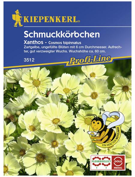 KIEPENKERL Schmuckkörbchen, Cosmos bipinnatus, Samen, Blüte: gelb