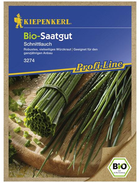 KIEPENKERL Schnittlauch Allium schoenoprasum