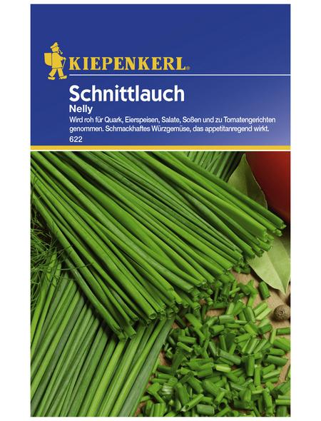 KIEPENKERL Schnittlauch schoenoprasum Allium »Nelly«