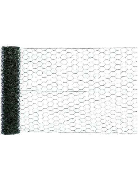 MR. GARDENER Sechseckgeflecht, HxL: 50 x 2500 cm, grün