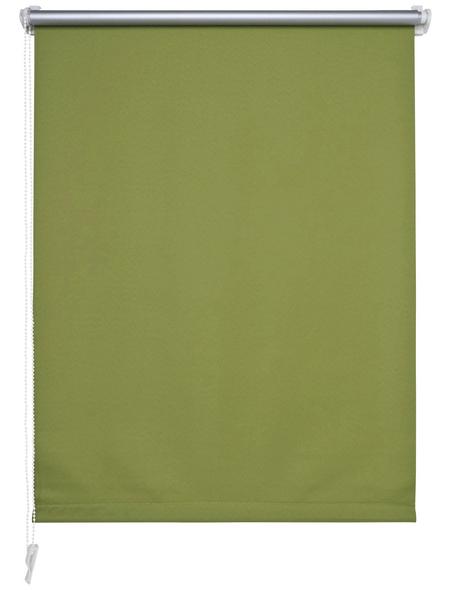 LIEDECO Seitenzug-Rollo, apfelgrün, Polyester