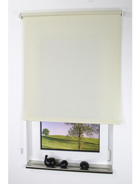 LIEDECO Seitenzug-Rollo, Cream, Höhe: 180 cm